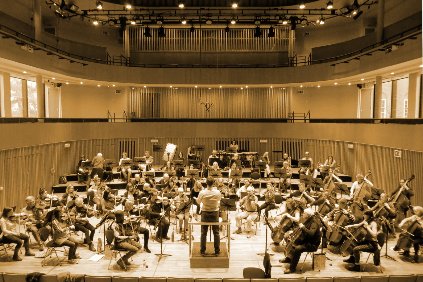 Image of the whole orchestra